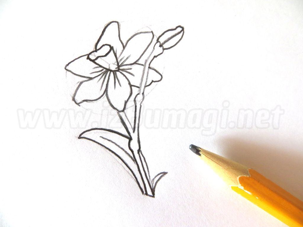Рисовать самые красивые цветы