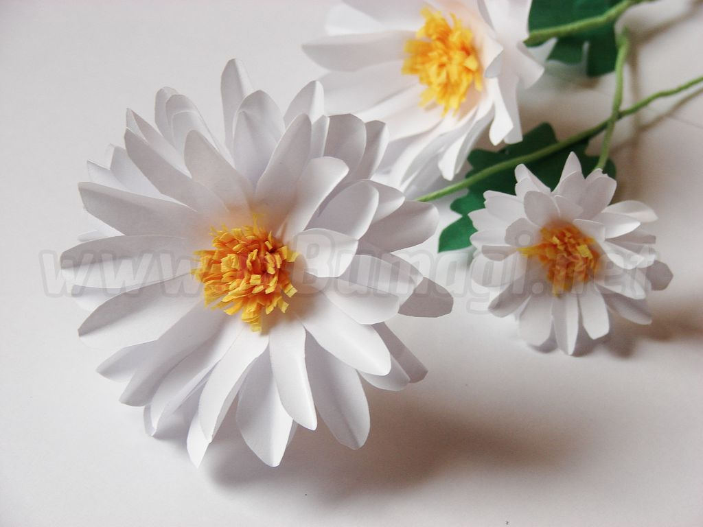Цветок из бумаги своими руками ромашка